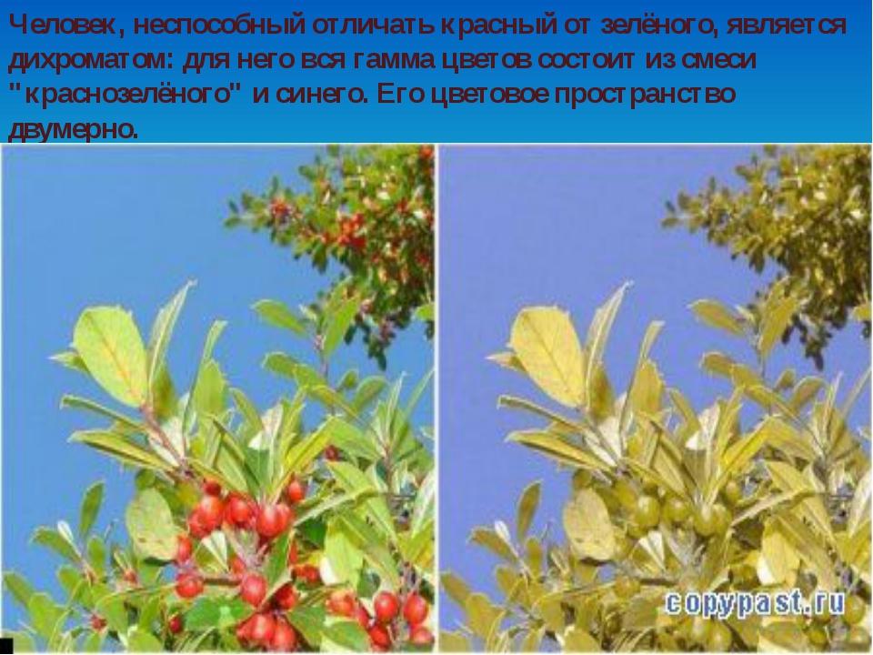 Человек, неспособный отличать красный от зелёного, является дихроматом: для н...
