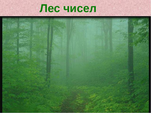 Лес чисел