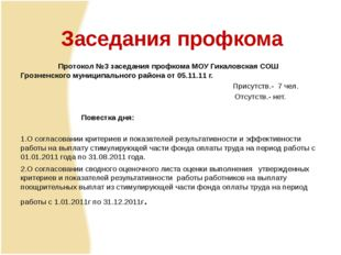 Протокол №3 заседания профкома МОУ Гикаловская СОШ Грозненского муниципально
