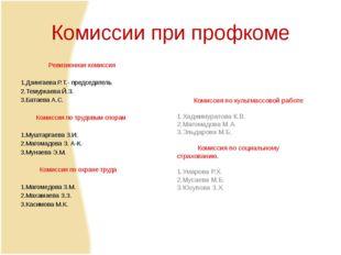 Комиссии при профкоме Ревизионная комиссия  1.Дзингаева Р.Т.- председатель 2