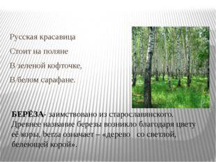 Русская красавица Стоит на поляне В зеленой кофточке, В белом сарафане. БЕРЁ