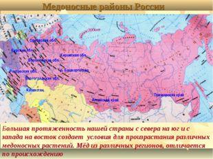 Медоносные районы России Орловская обл. Кировская обл. Курская обл. Воронежск