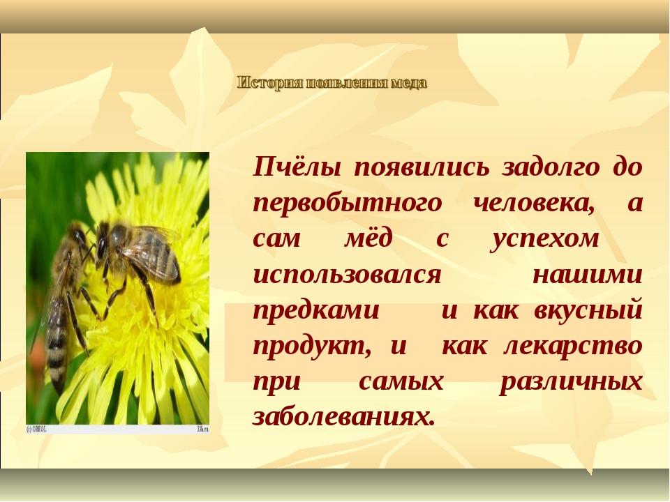 Пчёлы появились задолго до первобытного человека, а сам мёд с успехом исполь...
