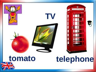 tomato TV telephone