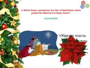 2. Which flower symbolizes the Star of Bethlehem which guided the Wisemen to