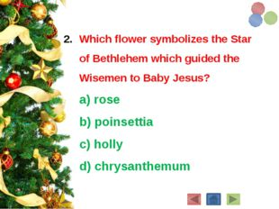 Which flower symbolizes the Star of Bethlehem which guided the Wisemen to Bab