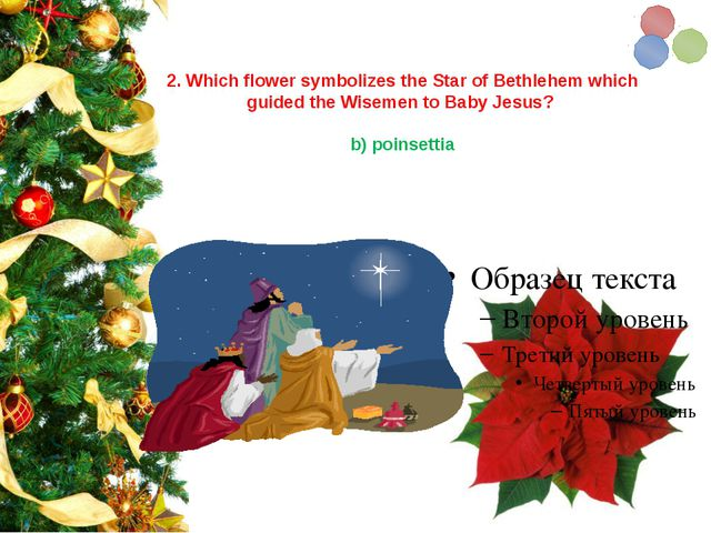 2. Which flower symbolizes the Star of Bethlehem which guided the Wisemen to...