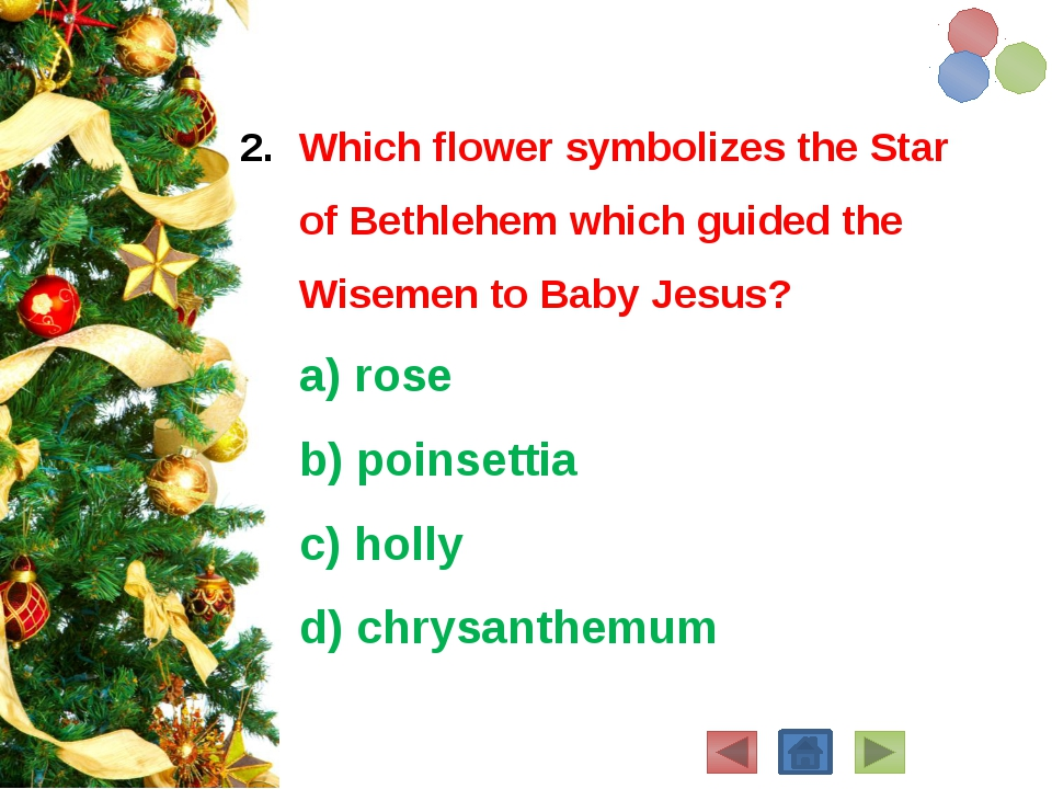 Which flower symbolizes the Star of Bethlehem which guided the Wisemen to Bab...