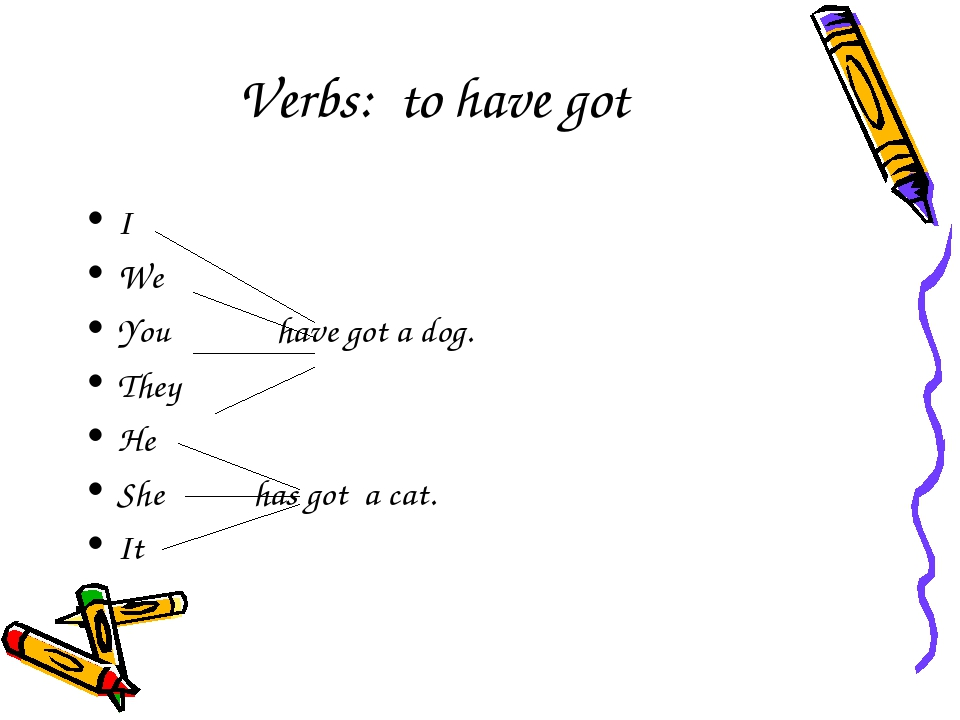 Verbs: to have got I We You have got a dog. They He She has got a cat. It