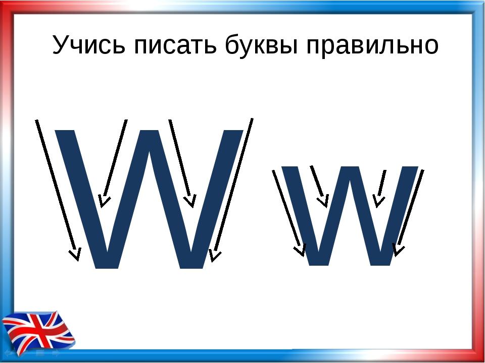 Учись писать буквы правильно W w