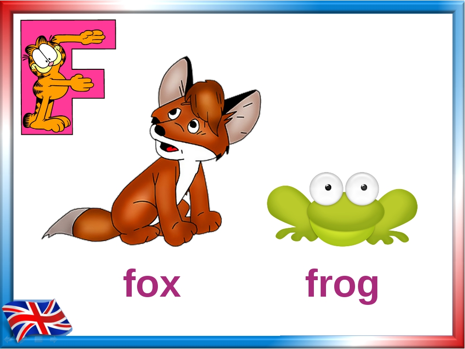 frog fox