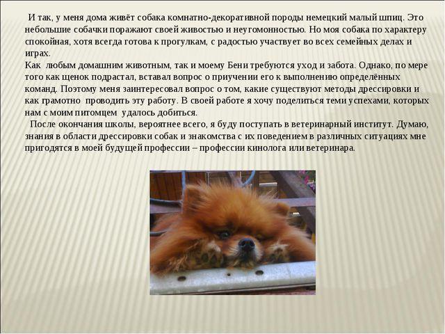 И так, у меня дома живёт собака комнатно-декоративной породы немецкий малый...