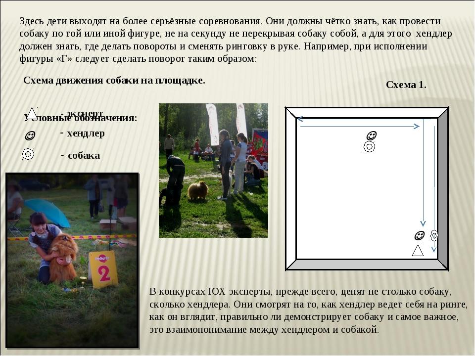 Схема движения собаки на площадке. Условные обозначения: Здесь дети выходят н...