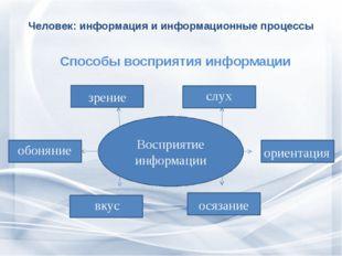 Человек: информация и информационные процессы  Способы восприятия информации