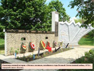 Памятник военной истории «Обелиск землякам, погибшим в годы Великой Отечестве