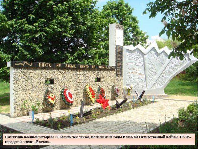 Памятник военной истории «Обелиск землякам, погибшим в годы Великой Отечестве...