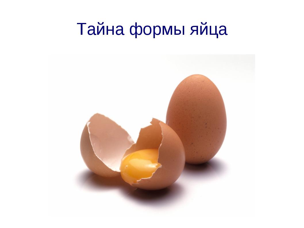 Тайна формы яйца