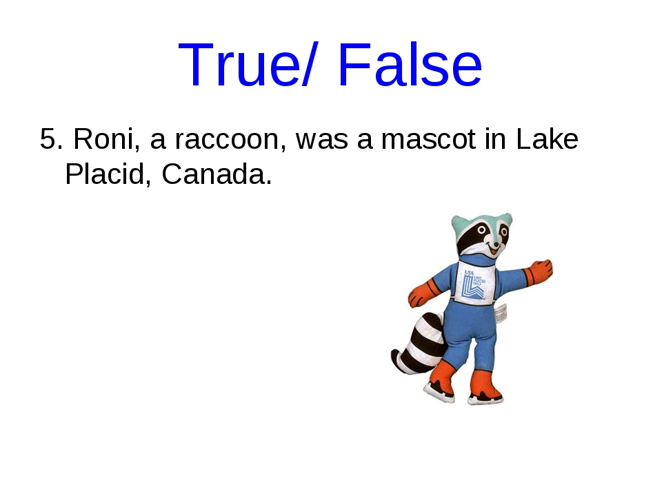 True/ False 5. Roni, a raccoon, was a mascot in Lake Placid, Canada.