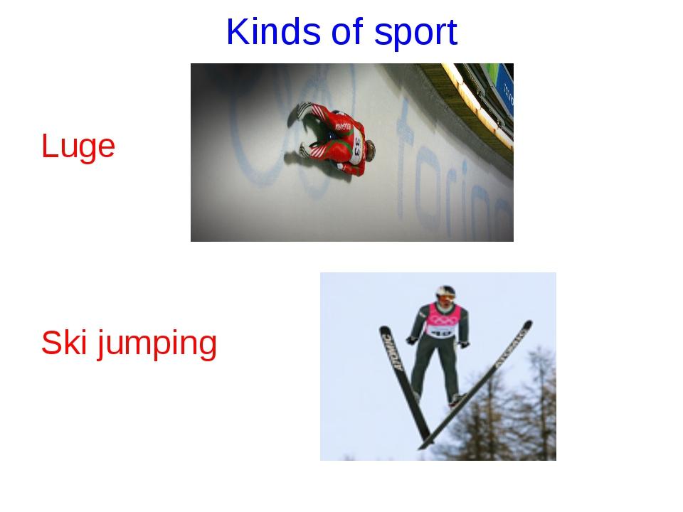 Kinds of sport Luge Ski jumping