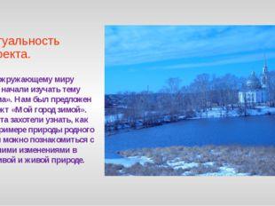 Актуальность проекта. По окружающему миру мы начали изучать тему «Зима». Нам