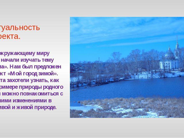 Актуальность проекта. По окружающему миру мы начали изучать тему «Зима». Нам...