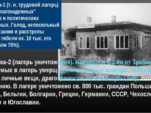 """Треблинка-1 (т. н. трудовой лагерь) - для """"неблагонадежных"""" элементов и полит"""