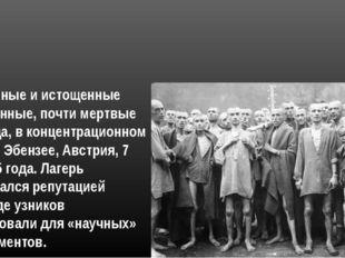 Измученные и истощенные заключенные, почти мертвые от голода, в концентрацион