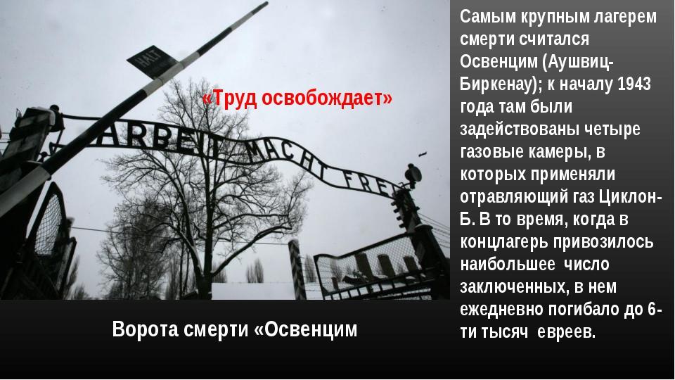 Ворота смерти «Освенцим «Труд освобождает» Самым крупным лагерем смерти счита...