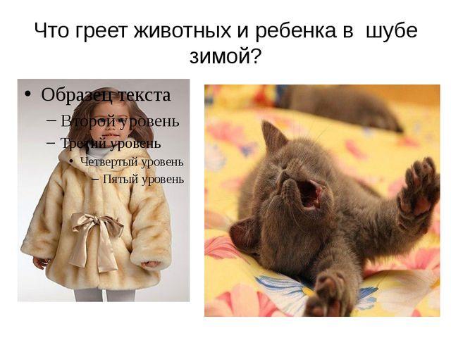 Что греет животных и ребенка в шубе зимой?
