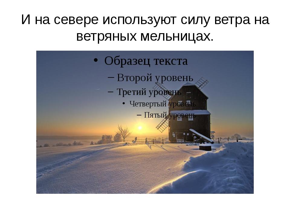 И на севере используют силу ветра на ветряных мельницах.