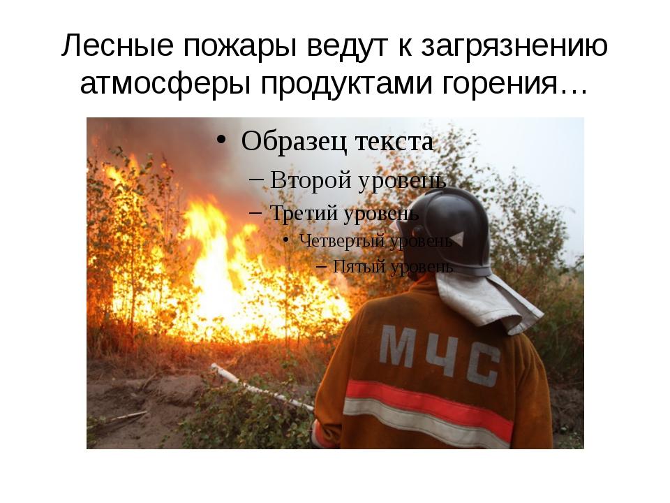 Лесные пожары ведут к загрязнению атмосферы продуктами горения…