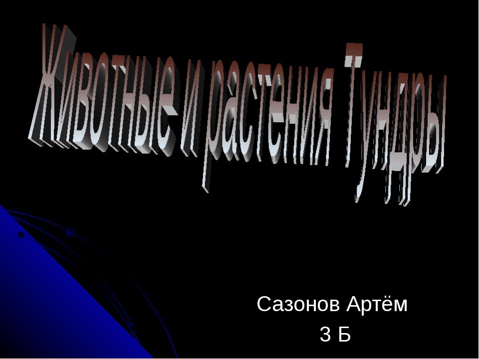 Сазонов Артём 3 Б