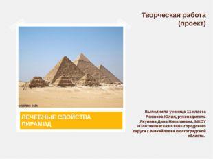 Творческая работа (проект) Выполнила ученица 11 класса Рожнова Юлия, руководи