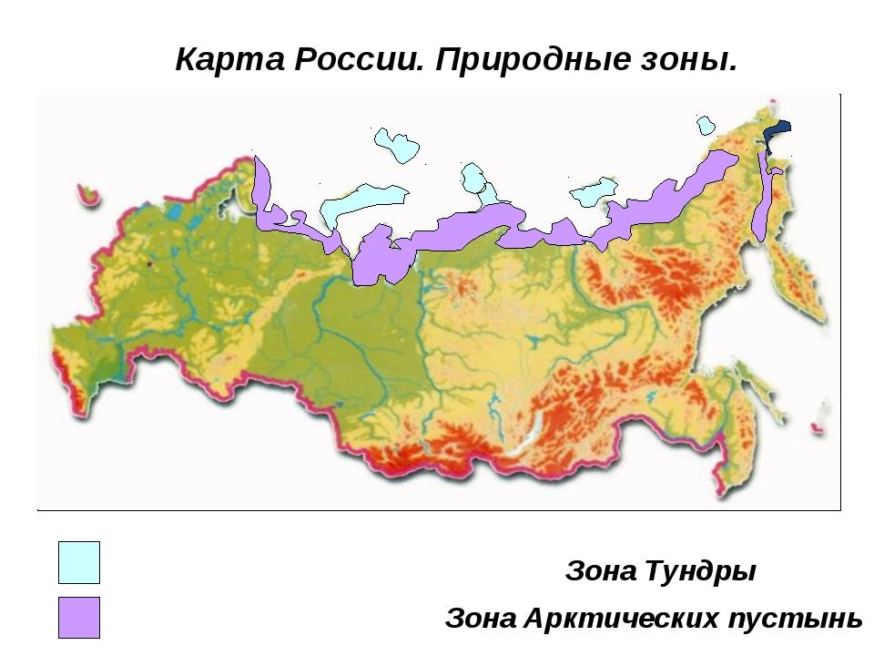 Зона Арктических пустынь Зона Тундры Карта России. Природные зоны.