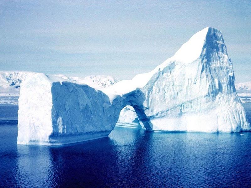 M:\картинки животных арктики\0_898b7_84b68cec_XL.jpeg