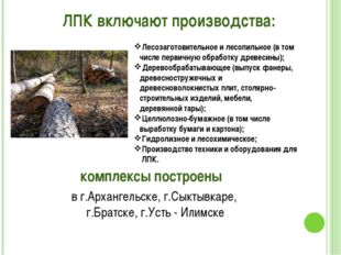 ЛПК включают производства: Лесозаготовительное и лесопильное (в том числе пер