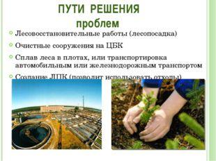 Лесовосстановительные работы (лесопосадка) Очистные сооружения на ЦБК Сплав л