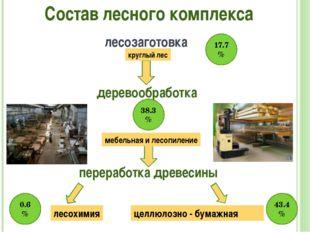 Состав лесного комплекса лесозаготовка круглый лес деревообработка мебельная