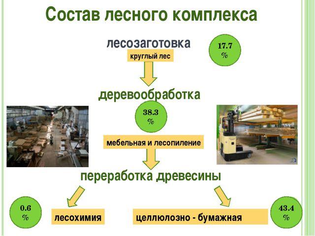 Состав лесного комплекса лесозаготовка круглый лес деревообработка мебельная...