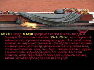65 лет назад 9 мая прогремел салют в честь победы в Великой Отечественной вой