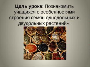 Цель урока: Познакомить учащихся с особенностями строения семян однодольных и