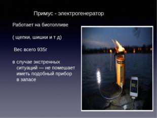 Примус - электрогенератор Работает на биотопливе ( щепки, шишки и т д) Вес в