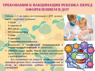 ТРЕБОВАНИЯ К ВАКЦИНАЦИИ РЕБЕНКА ПЕРЕД ОФОРМЛЕНИЕМ В ДОУ Ребенок 2-3 лет перед