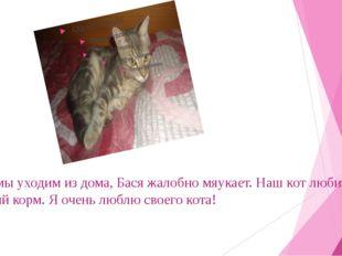 Когда мы уходим из дома, Бася жалобно мяукает. Наш кот любит кошачий корм. Я