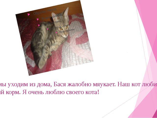 Когда мы уходим из дома, Бася жалобно мяукает. Наш кот любит кошачий корм. Я...