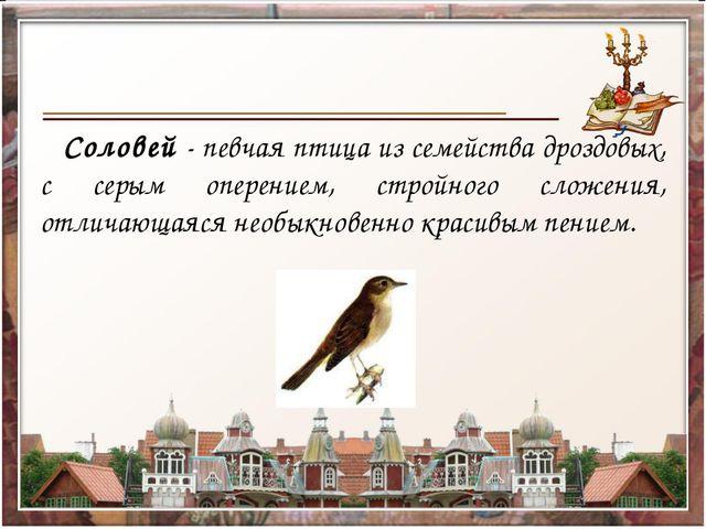 Соловей - певчая птица из семейства дроздовых, с серым оперением, стройного...