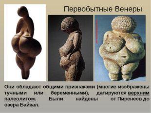 Первобытные Венеры Они обладают общими признаками (многие изображены тучными