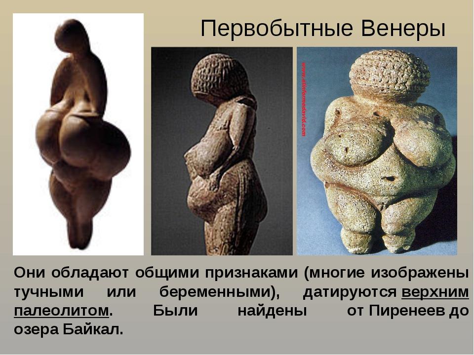 Первобытные Венеры Они обладают общими признаками (многие изображены тучными...
