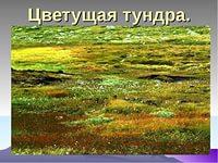 https://im2-tub-ru.yandex.net/i?id=3b20d55acc295c24711570f8dddbeaf5&n=21
