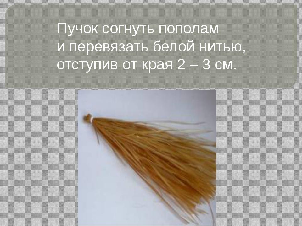 Пучок согнуть пополам и перевязать белой нитью, отступив от края 2 – 3 см.
